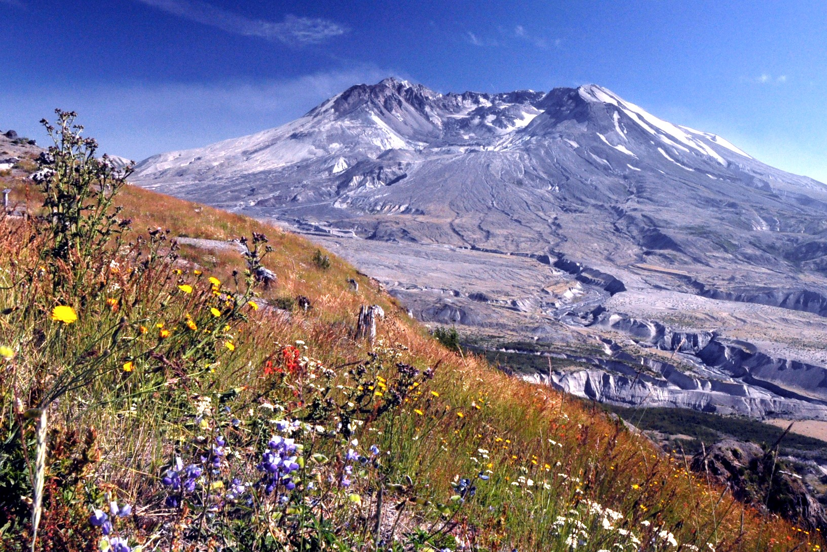 mt st helens today